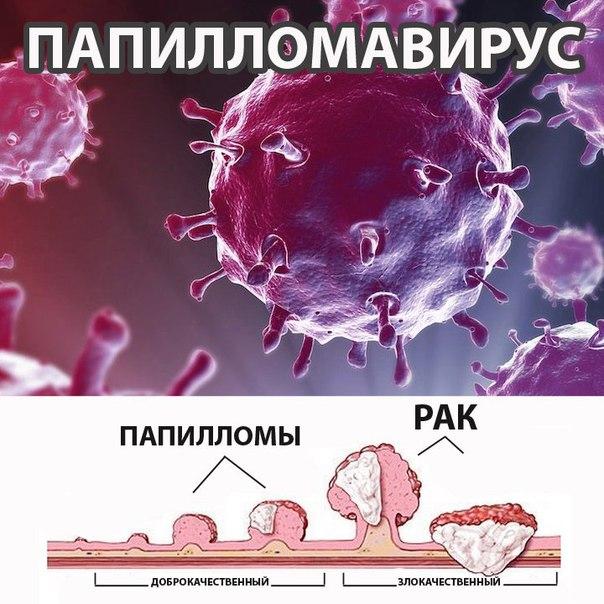 Эффективного лечения рака