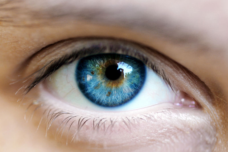 вич через глаза