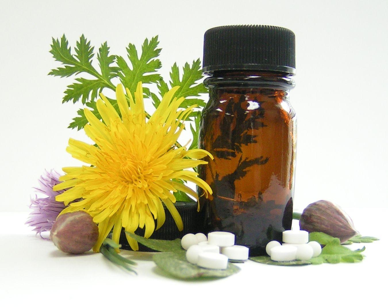Гомеопатия в лечении хламидиоза и хламидий