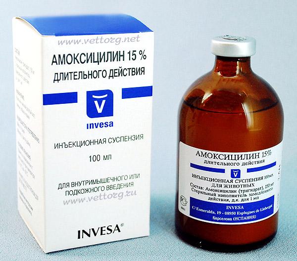 Необходимость приема антибиотиков при лечении простатита у мужчин