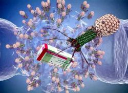 бактериофаг простатит отзывы