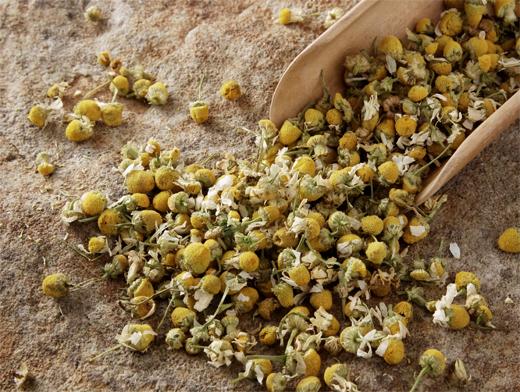 Какие травы помогают при цистите