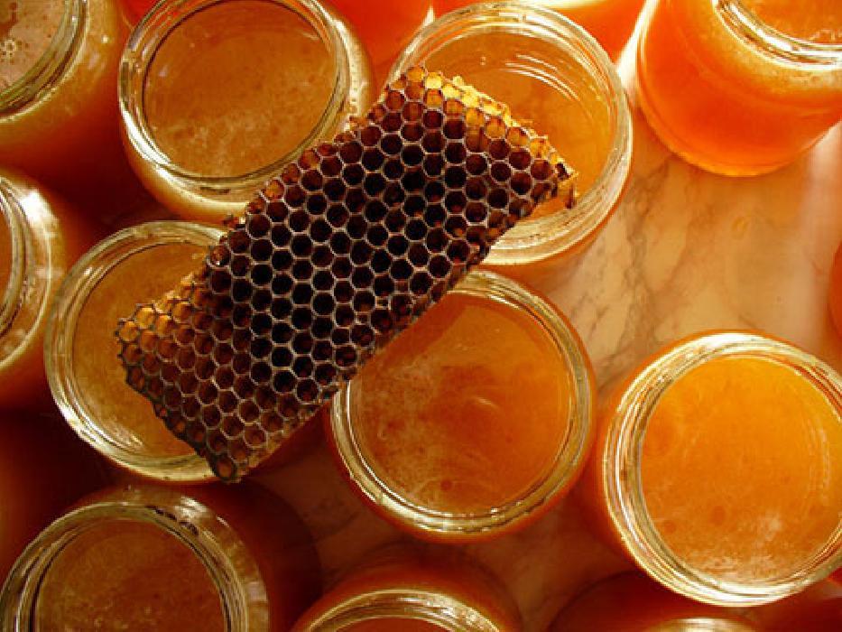 Мед от молочницы, лечение кандидоза прополисом